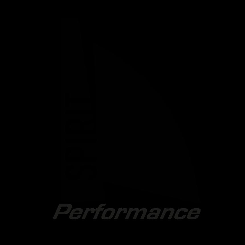 Logo Performance Spirit